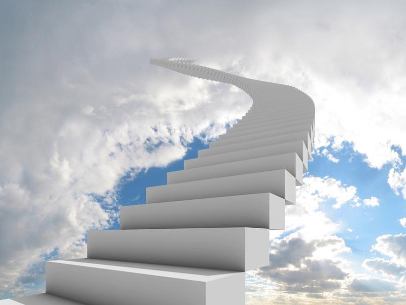 28 Step Success Plan